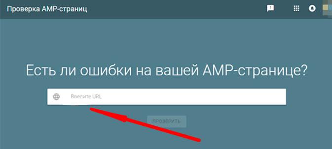 Что такое AMP Google - применение на Вордпресс